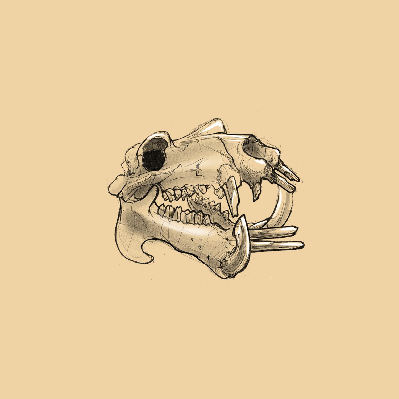Viscom4; Sketch